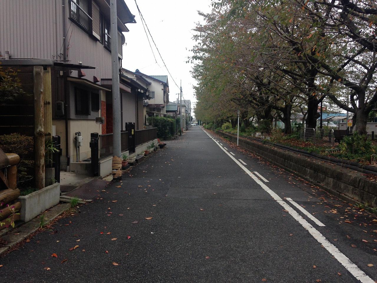 写真 2014-10-22 13 53 23