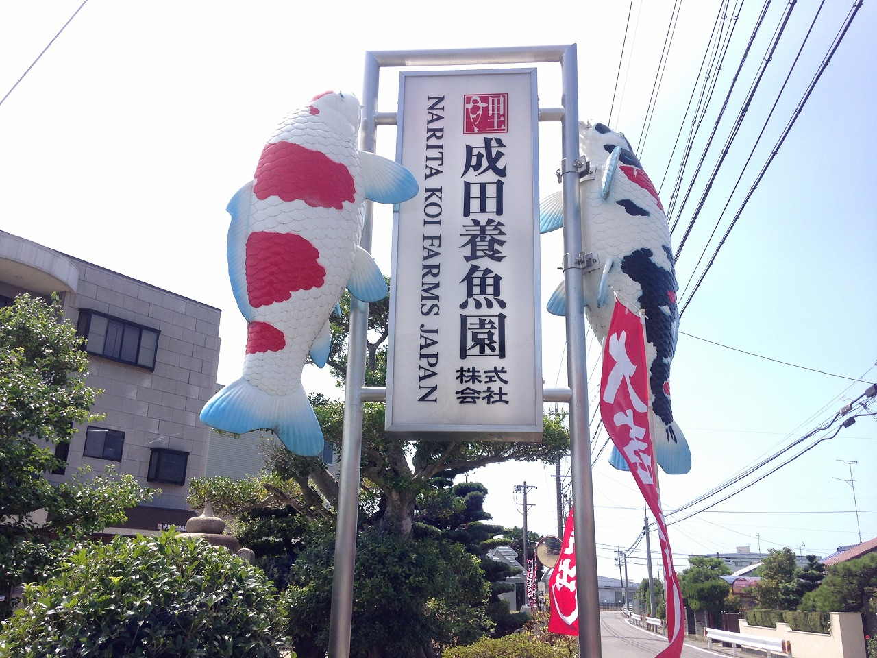 写真 2015-08-23 13 07 37
